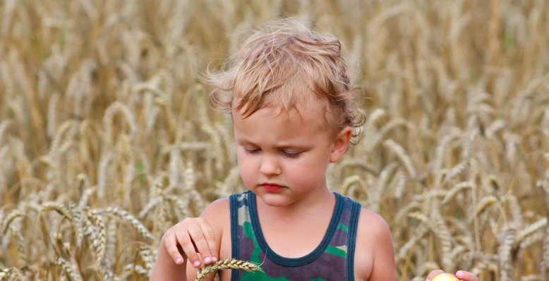 enfant dans un champs de paille